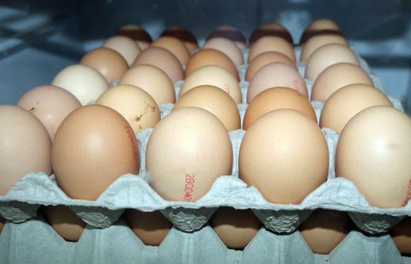 Цени на яйца за страната на едро и на дребно