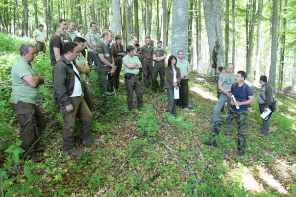 Обсъждат се модерни практики за опазване на горите