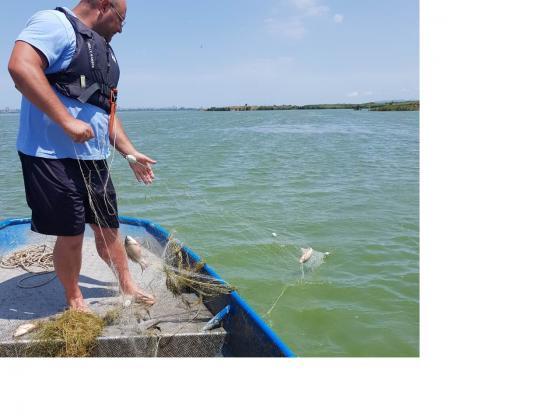 Над 2 километра незаконноо поставени мрежи са извадени от езерото Вая