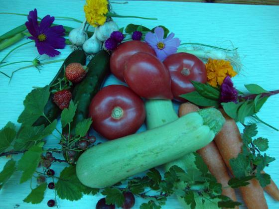 Микроелементите са важни за пълноценното подхранване на растенията