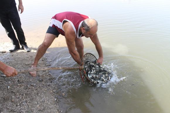 Есетрите, пуснати от WWF по Дунав, достигнаха Черно море