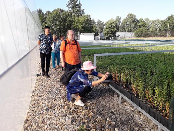 Партньорство с Китай за производство на горски фиданки