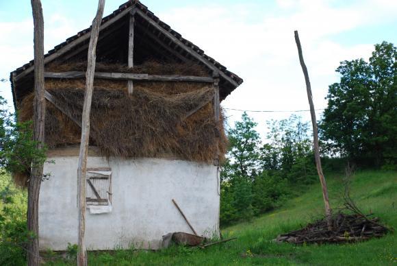 Годишникът на Евростат: Една трета от 10-те милиона ферми в Европа са в Румъния