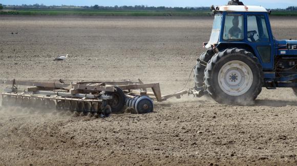 Млади фермери ще могат да кандидатстват за земеделски земи от Държавния поземлен фонд