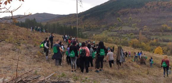 Бизнесът помага за възстановяване на увредените гори в Югозападна България