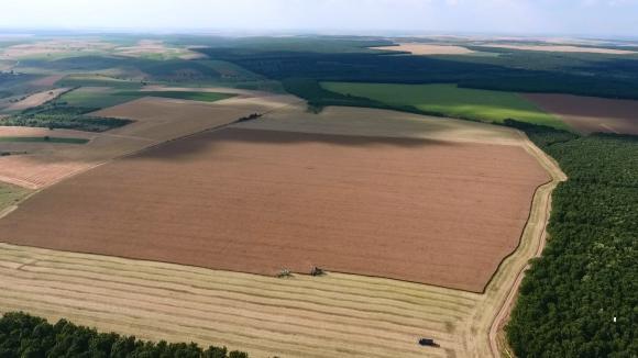Договорите за наем на земя са едногодишни, когато собствениците държат под 25% от имота
