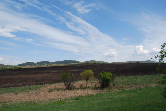 Общините ще посочват фермерите до 40 години, които с предимство ще наемат държавни земи