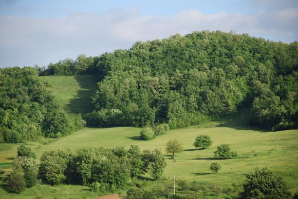 До 2022 г. годишно ще се субсидират по 45 хиляди ферми в планинските зони и в НАТУРА