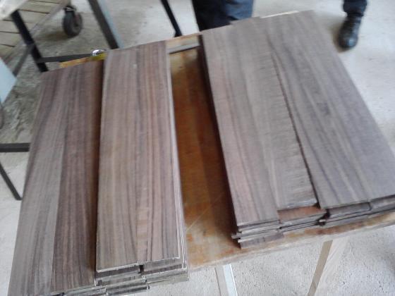 WWF: Държавите в ЕС допускат внос на нелегална дървесина