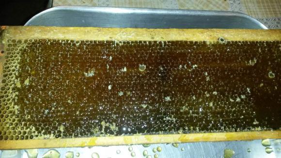 Украинци предлагат пчелния мед в съдинки от восък