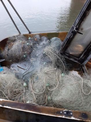 Откриха 400 метра бракониерски мрежи при проверка по Дунав край Силистра