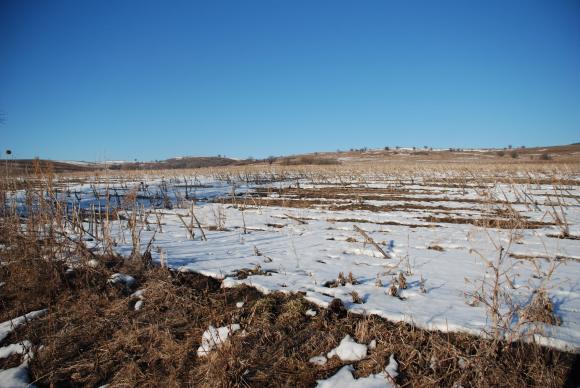 Мразовито начало за 2020 година, с обещания за повече валежи през януари