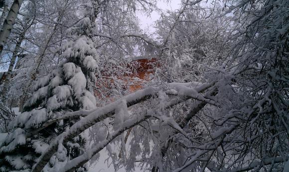 Около 16 януари ще скове по-голям студ, отколкото покрай Ивановден