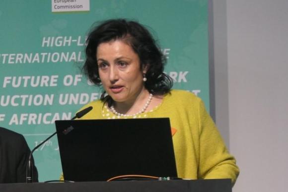 Танева настоява за нови правила на обезщетения при заразните болести