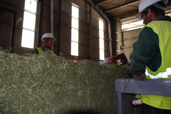 Дали новата ОСП ще насърчи кръговата икономика в земеделието