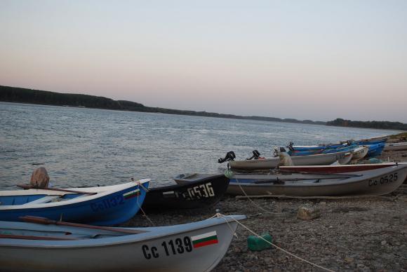 Критично застрашен вид риба е открита мъртва при незаконен улов с кърмаци по Дунав
