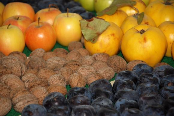 Износът на плодове от Молдова за Русия надхвърли рекордните 200 милиона долара