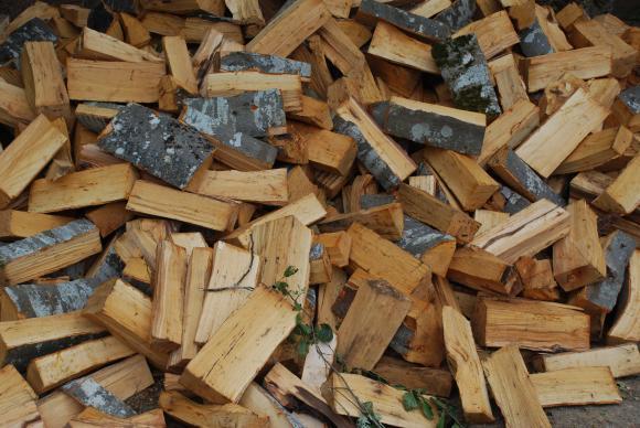 Нови срещи на бизнеса в дърводобива с горските