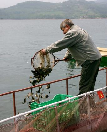 Рибарската програма помръдна – отворени са 4 мерки за близо 1 млн. лв.