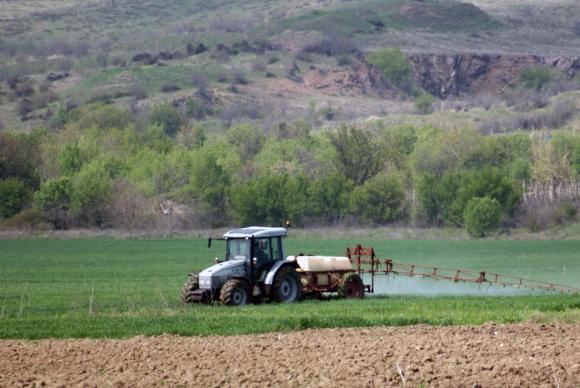 Експерти очакват спад в добивите на основни зърнени култури в ЕС