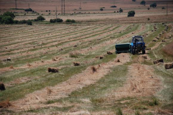 """Кабинетът даде """"зелен коридор"""" за транспорта на наетите в земеделието"""