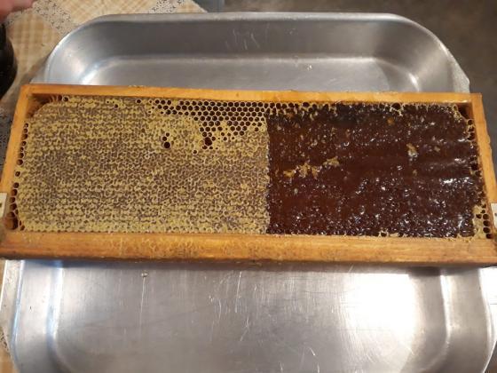 Износът на мед от Украйна нарасна рязко през март