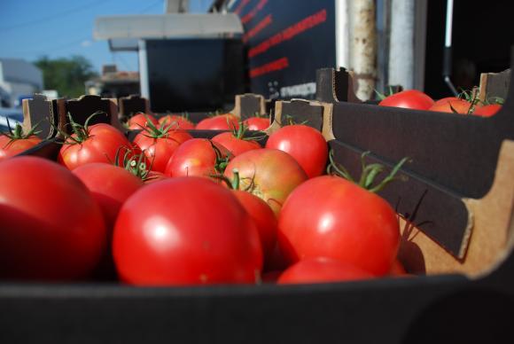 От края на май агенцията по храните проверява за пестициди всеки зеленчук, внесен от ЕС