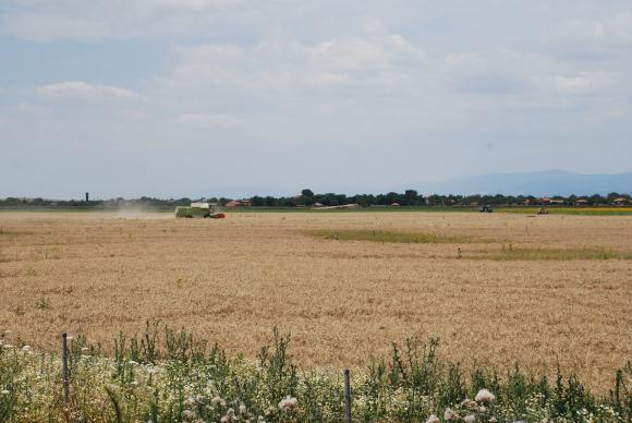 Въпреки кризата фермерите държат на инвестициите в комбайни