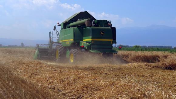Най-актуалното за новата реколта от пшеница в ЕС