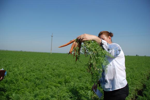 "Фонд ""Земеделие"" отчита 7 500 теренни проверки, резултатите ще бъдат обявени на финала"