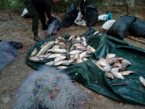 Иззеха километър мрежи и 130 кила риба от бракониери в Северна България