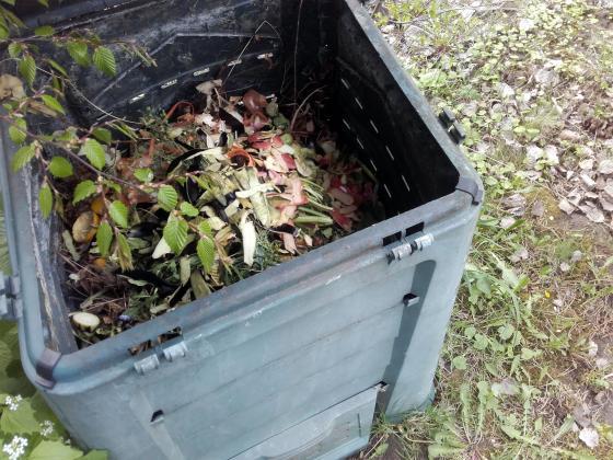 Направете си компостна почва за стайни растения