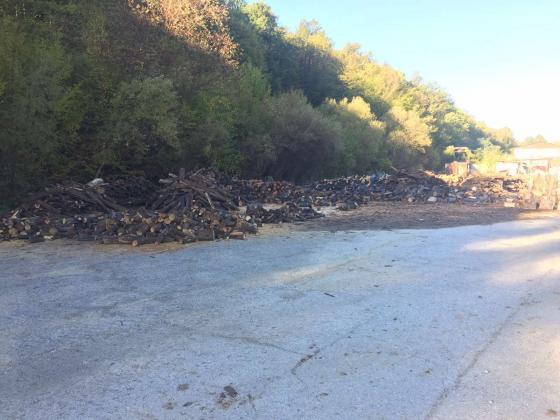 Спряха дейността на 3 обекта за съхранение и преработка на дървесина в Габровско