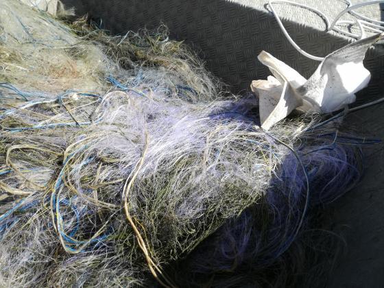 Извадиха 800 метра мрежи и 20 коша за раци от Дуранкулашкото езеро