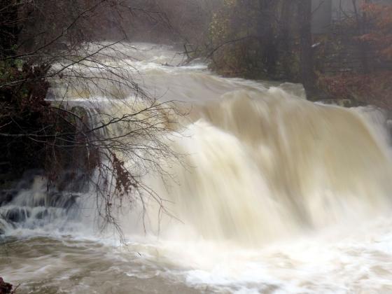 Обвиняват Лакталис в многократно замърсяване на френските реки