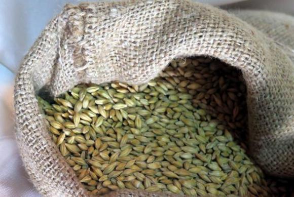 Вносът на пшеница във Великобритания нарасна рязко през септември