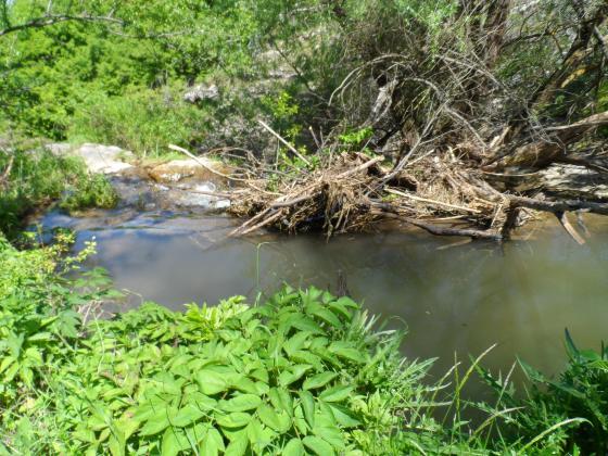 Онлайн семинар за опазване на почвите и водите