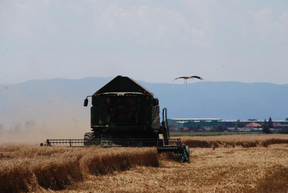Още през април-май 2021 г. ще има прием по мерките за инвестиции във ферми и преработвателни предприятия, обещава Грудев