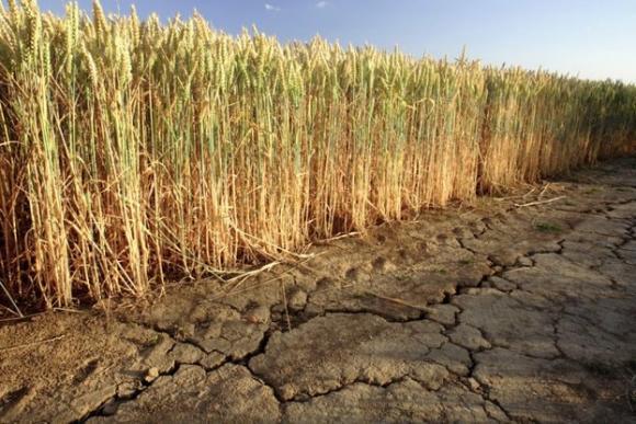 Вторият транш от 16 млн. лева са платени като компенсации за сушата