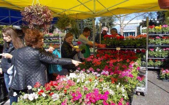 България е сред петте основни вносители на цветя от Турция