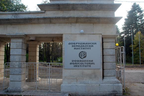 От две години се отчита плах ръст в българските селекции семена