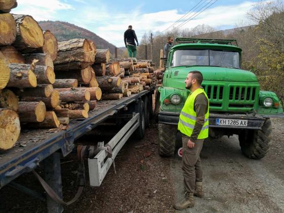 Следете в интернет дали дърводобивът върви по правилата