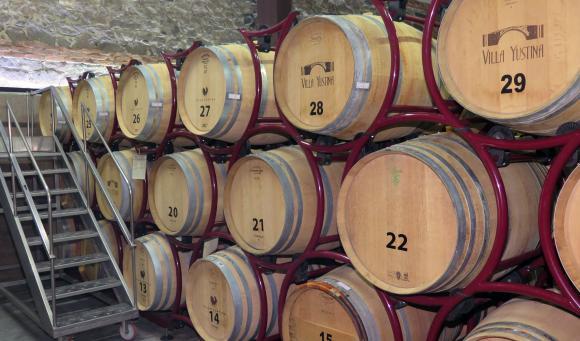 От 1 февруари се отваря приема по мярката за инвестиции във винарни