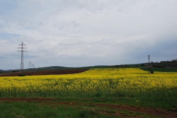Алтернативата да минете от есенна към пролетна рапица