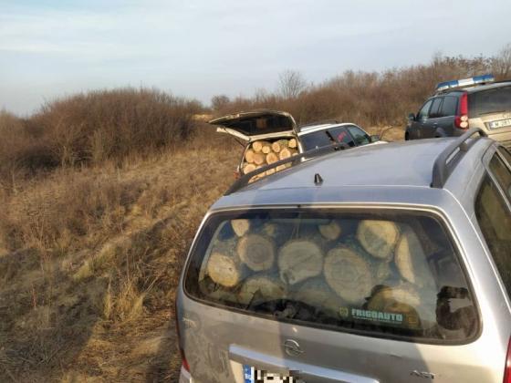 Горски предотвратиха незаконна сеч в Белослатинско