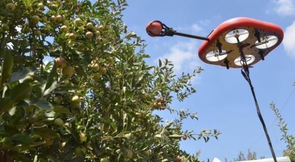 Кубота инвестира в брането на плодове с летящите роботи на Tevel
