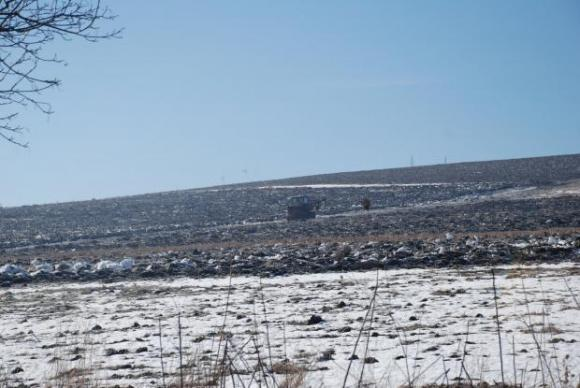 Меката зима подобри значително състоянието на есенниците в Русия