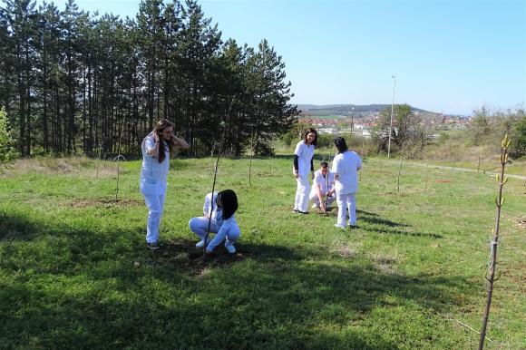 300 млади дръвчета засадиха студенти и служители на Тракийски университет