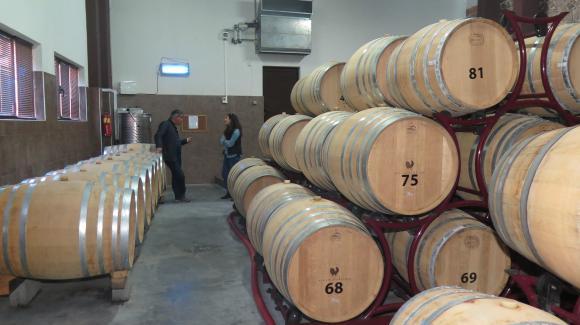 """Започва сключване на договорите по мярка """"Кризисно съхранение на вино"""""""