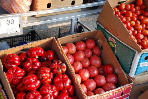 На 19 май се организира обучение за преработватели на плодове и зеленчуци